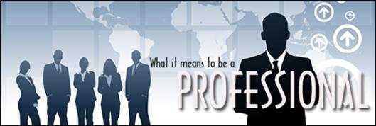 pishon_designs_professional
