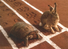 hare_turtle-race-easter